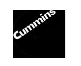 engine-brake_cummins-button